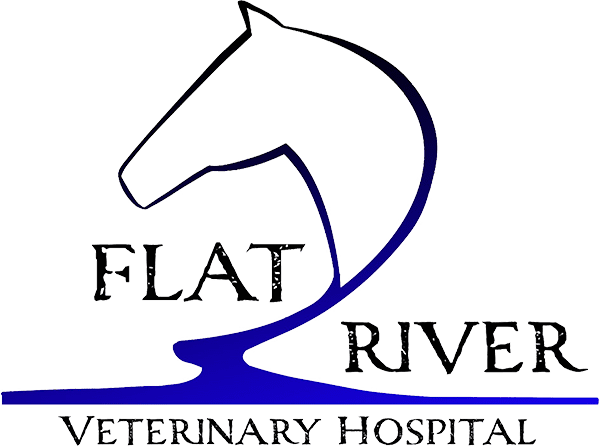 Flat River Veterinary Hospital